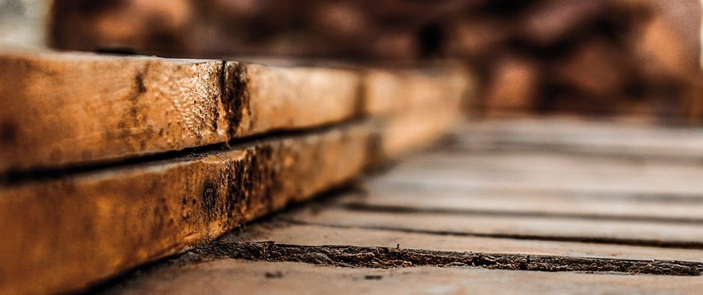 Rotting wood.