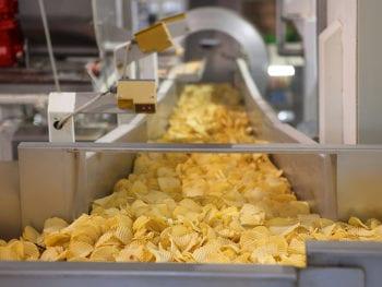 Potato chips on a conveyor belt.