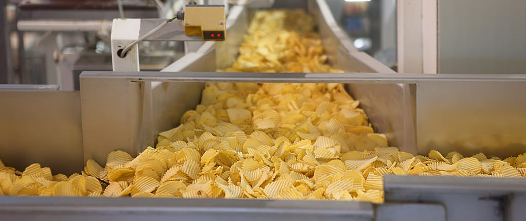 Potato chips on a conveyor belt.